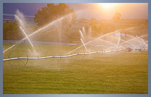 Agricultural Services | Turlock, CA | Brite Electric, Inc.  | 209-632-7291