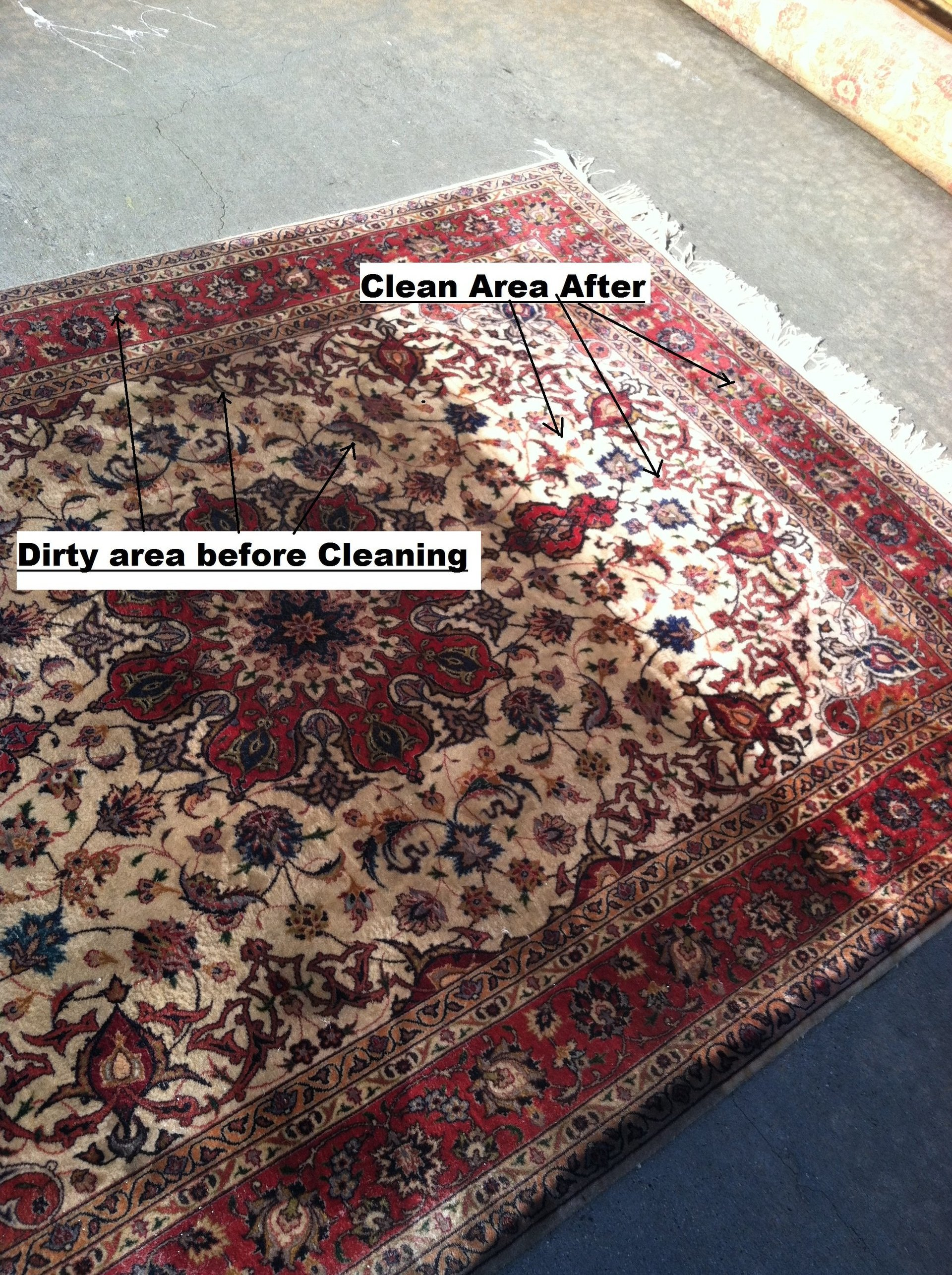 rug brown area p rich rugs tones cleaning