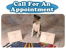 Dog Grooming - Alpena,  MI - Canine Care By Janet - Call For An Appointment