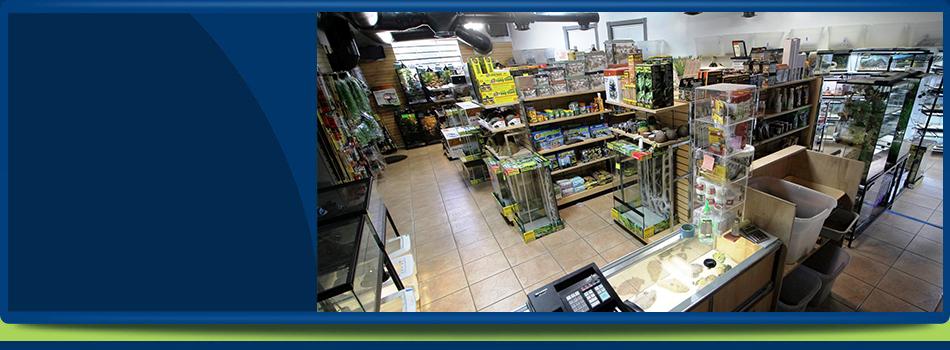 Herp Hobby Shop – Exotic Pet Store | Oldsmar, FL