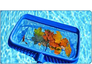 Pool maintenance | New Braunfels,  TX    | All Seasons Pools | 830-626-7665 (830- 626-POOL)