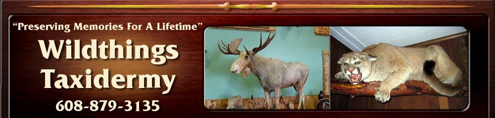 Taxidermist - Orfordville, WI - Wildthings Taxidermy