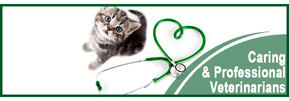 Veterinarians | Gurnee, IL | Grand Animal Hospital | 847-249-7730