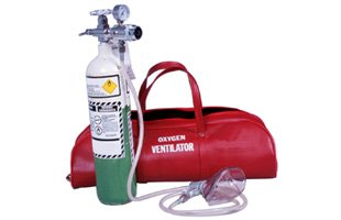 Portable oxygen tank with bag