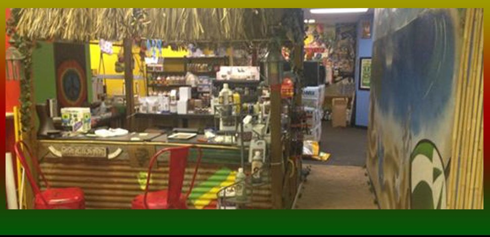 Inside the store of Lil Shop Of Growers