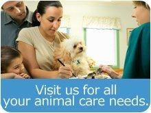 Veterinary Service - Great Barrington, MA - Family With Pet - Seekonk Veterinary Hospital