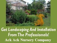 Landscape Design - Loves Park, IL - Ack Ack Nursery Company