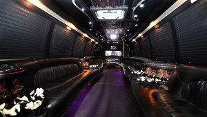 14 passenger - Krystal Coach Party Bus - Interior