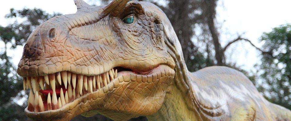 Animated Dino