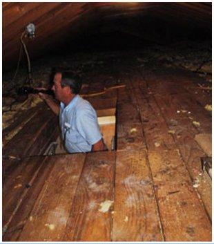 Tullahoma Home Inspector | Tullahoma, TN | Jernigan Home Inspections | 931-454-9065