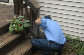 Home Inspection - Sevierville, TN - All Pro Pest Control