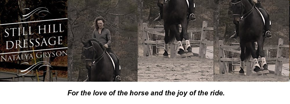 Horse Training - Brevard, NC - Still Hill Dressage