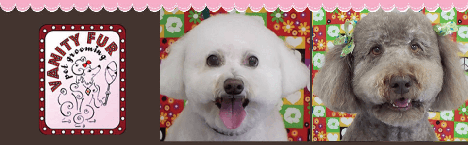 Pet Grooming | Summerfield, FL | Vanity Fur Pet Grooming | 352-245-4585