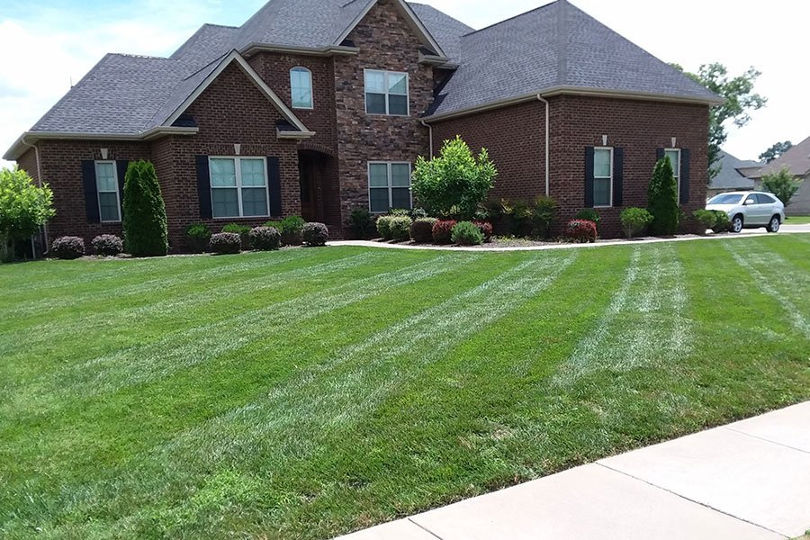 Lawn improvement