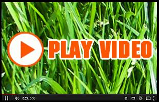 Landscaper | Winfield, KS | Gottlob Lawn & Landscape LLC | 620-222-8870 | 580-798-4874