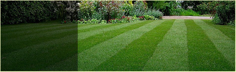 Lawn Care and Seasonal | Winfield, KS | Gottlob Lawn & Landscape LLC | 620-222-8870	| 580-798-4874