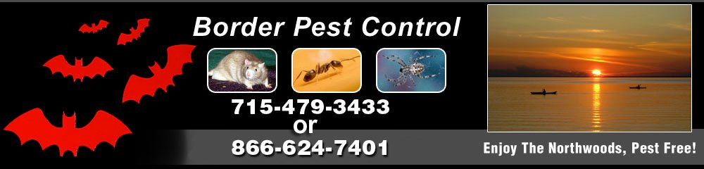 Pest Control - Eagle River, WI - Border Pest Control
