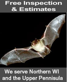 Pest Removal - Eagle River, WI - Border Pest Control