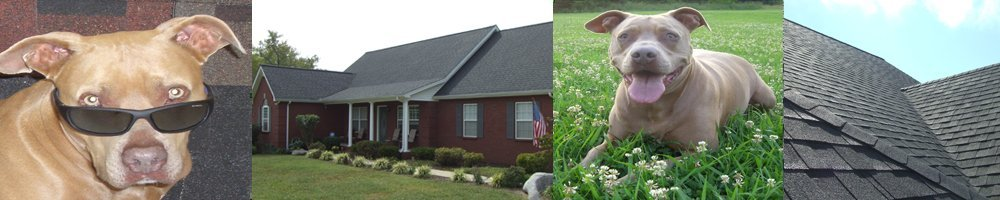 Roofing Services - Middle Tennessee - Rock Solid Roofing - Roofing, Gutters, Siding, Painting, Flooring
