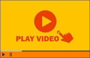 Awesome Alpacas Video