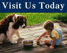 Pet Supplies - Dade City, FL - Dog-Mania & Cats