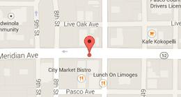 Dog-Mania & Cats 37846 Meridian Ave., Dade City, FL 33525