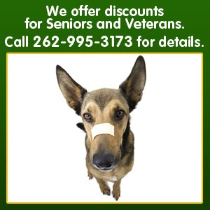 Mobile veterinarian - Milwaukee, WI - Dr. Schmid's Mobile Veterinary Practice - We offer discounts for Seniors and Veterans Call 262-995-3173 for details