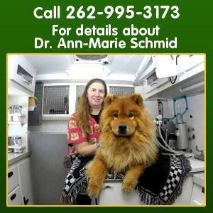 Mobile vet - Milwaukee, WI - Dr. Schmid's Mobile Veterinary Practice - For details about Dr. Ann-Marie Schmid