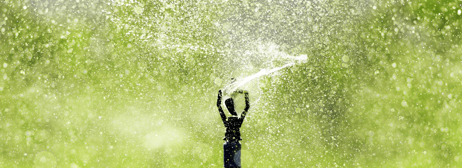 High-Quality Sprinkler