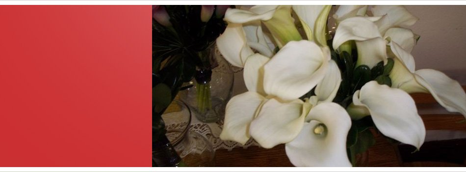 carsage   Pittsburgh, Pa   Plants and Flowers by Lisa   412-481-5472