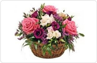 florist   Pittsburgh, Pa   Plants and Flowers by Lisa   412-481-5472