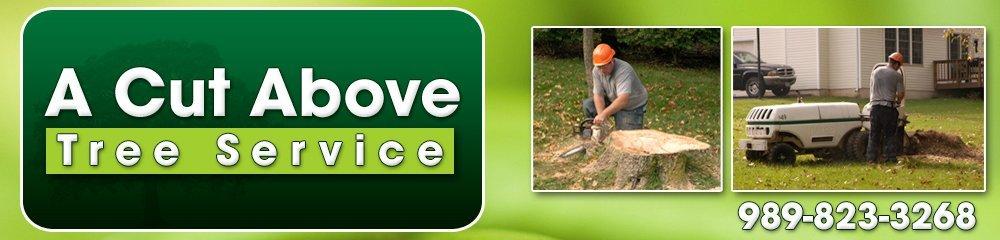 Tree Care Vassar, MI - A Cut Above Tree Service 989-823-3268