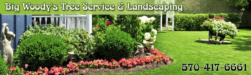 Landscaping Contractor - Harveys Lake, PA - Big Woody's Tree Service & Landscaping