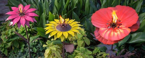 Flowers for spa fragrances