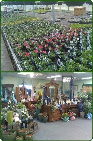 Floralcrest Florist & Greenhouse - Flowers - Mendota, IL