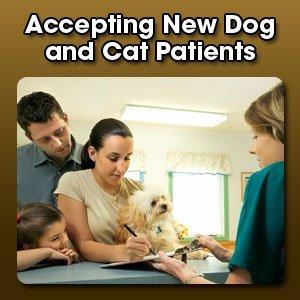 Veterinarian - Grapevine, TX - Northwest Plaza Animal Hospital