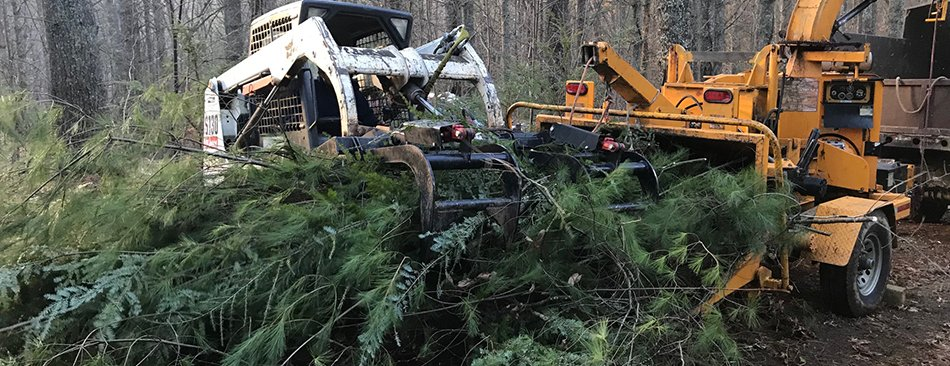Brush Removal and Lot Clearing Boone Banner Elk Spruce Pine NC