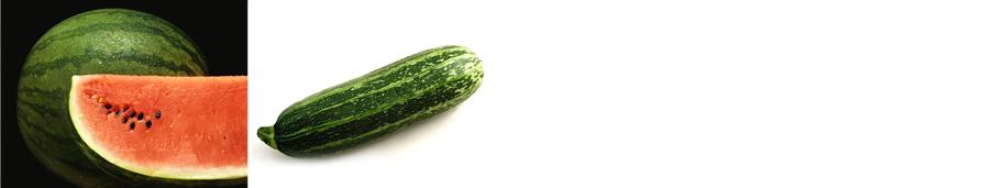 watermelon seeds - Weatherford,  TX  - Dillard Feed & Seed Inc. - 817-596-8271