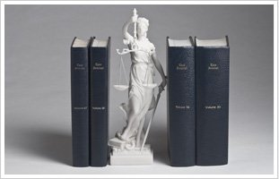Lady justice and lawyer books