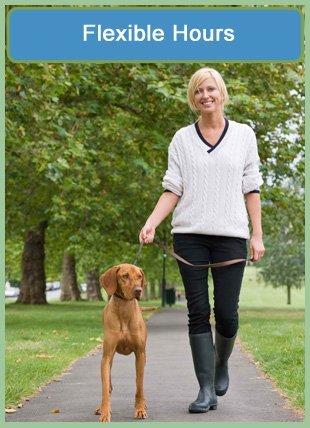 Dog Walks | Downers Grove, IL | Jane's Pet Sitting | 630-347-9916