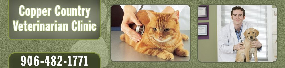 Vet Services - Houghton, MI - Copper Country Veterinary Clinic