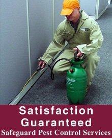 Pest Services - Ganado, TX - Safeguard Pest Control Services - Pest Control