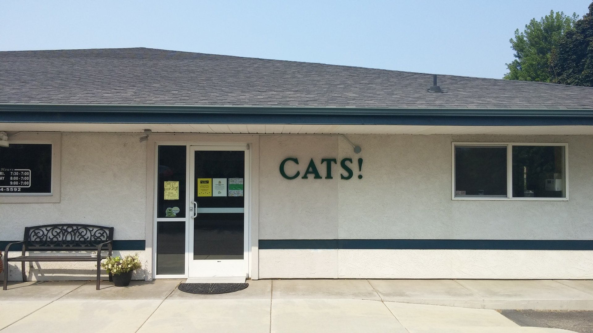 Cat Entrance, Outside of Building, Veterinary Hospital