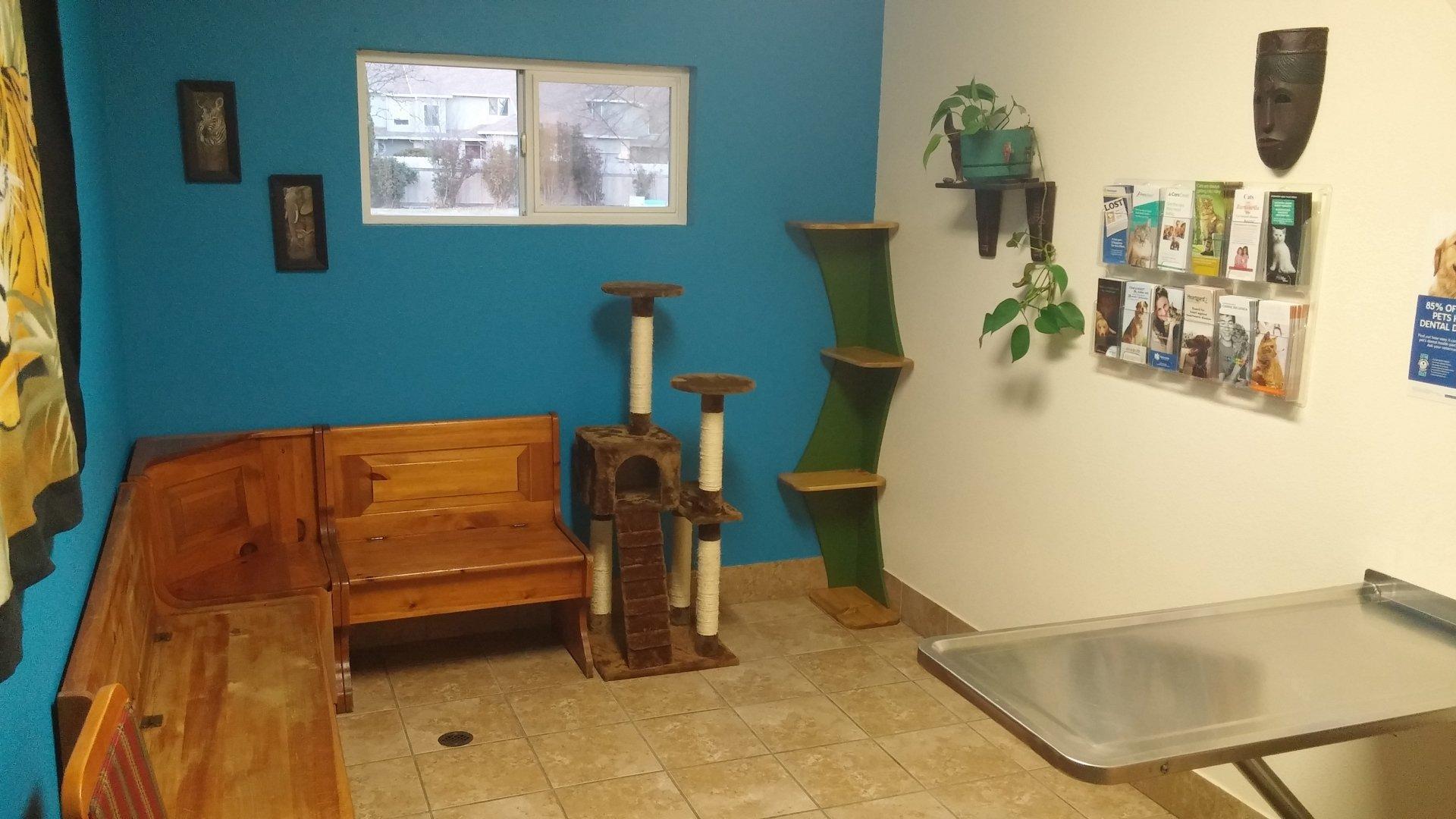 Jungle Room, Veterinary Hospital, Broadway Vet