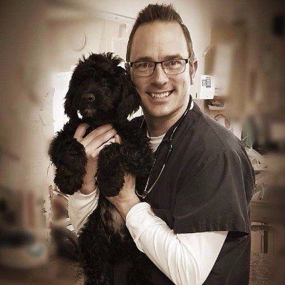 Dog Services, Puppy Picture, Dr. Caldwell, Veterinary Care