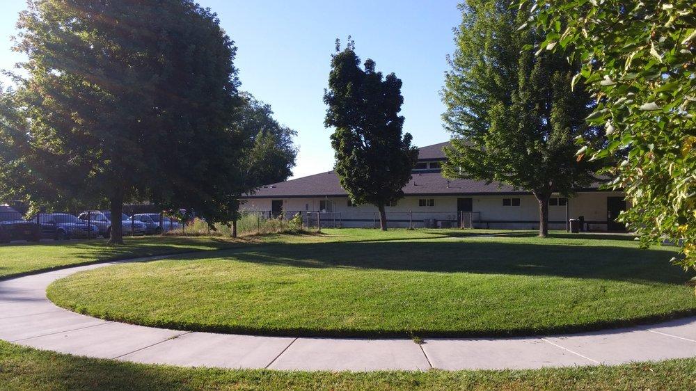 Backyard, Big Backyard, Huge Backyard, Dog Training Classes, Backyard, Veterinary Hospital