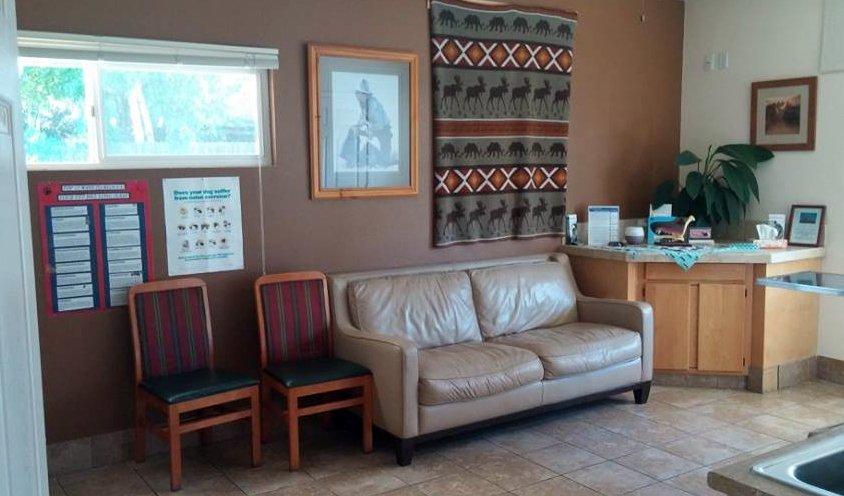 Veterinary Hospital, Cowboy Room, Broadway Vet