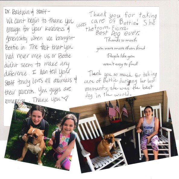 Testimonial from customer, bulldog owner review, bulldog, bettie the bulldog, Dr. Baldwin, Dr. Stephanie Baldwin