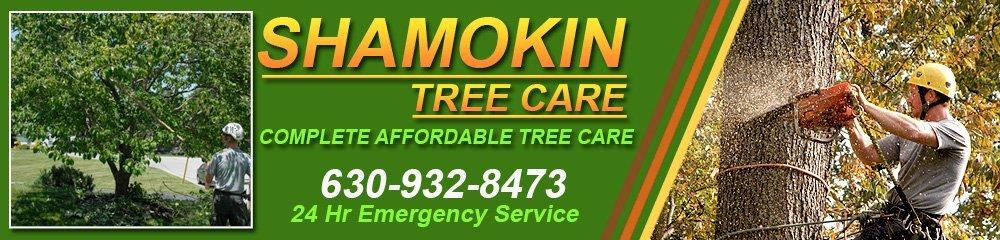 Shamokin Tree Care Specialist - Saint Charles, IL ( Illinois )