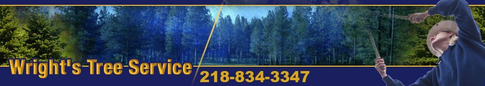 Tree and Lawn Services - Two Harbors, MN - Wright's Tree Service